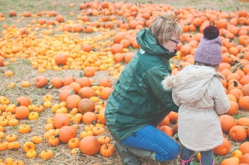 pumpkins-15